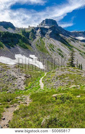 Fragment of Mount Baker trail in, Washington, USA