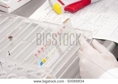 Laboratory-blood Bank
