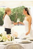 Bride With Wedding Planner In Marquee poster