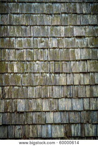 Roof Shingles Texture