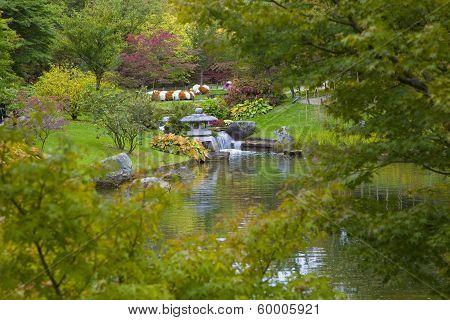 Small Waterfall In Japanese Garden, Hasselt, Belgium