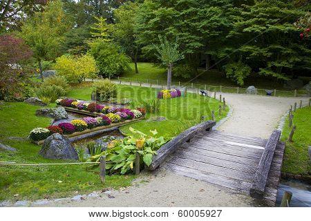 The Bridge Over The Creek In Japanese Garden