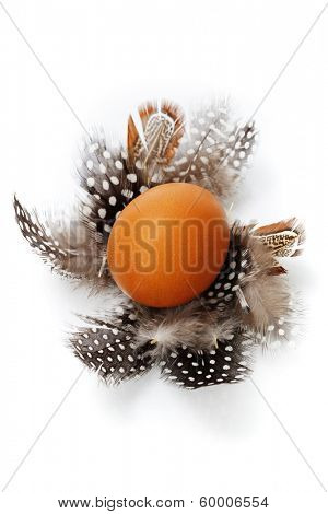 eggs and feathers over white
