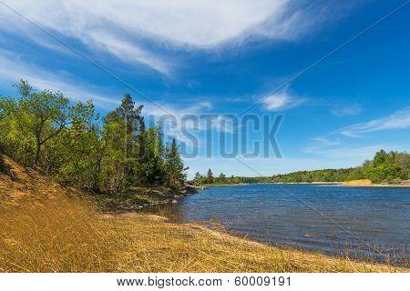 Early Summer Landscape In A Bay