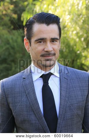 PALM SPRINGS, CA - JAN 5: Colin Farrell at the 10 Directors to Watch brunch at The Parker Hotel on January 5, 2014 in Palm Springs, California