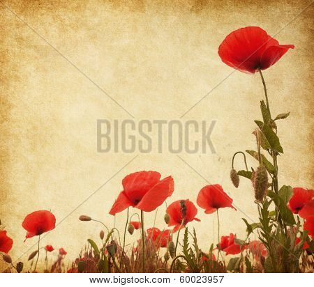 Paper texture with poppies