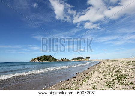 Moturiki Island at the beach