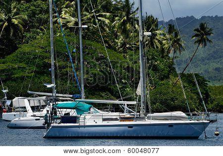 Sailboats at Savusavu harbor Vanua Levu island Fiji South Pacific poster