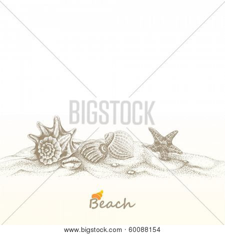 Summer beach with seashells and sea star.