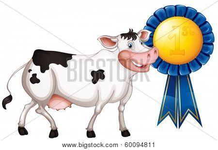 Illustration of a cow with a first prize ribbon on a white background