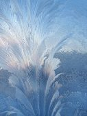 Frosty natural pattern and sunlight on winter window poster