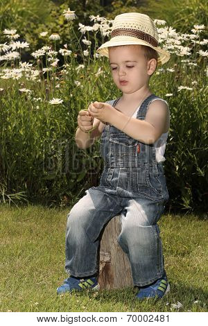 Boy with a flower