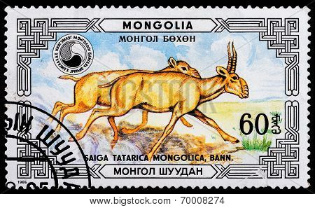 Post Stamp From Mongolia