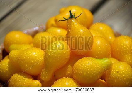 Yellow Cherry Tomatoes.
