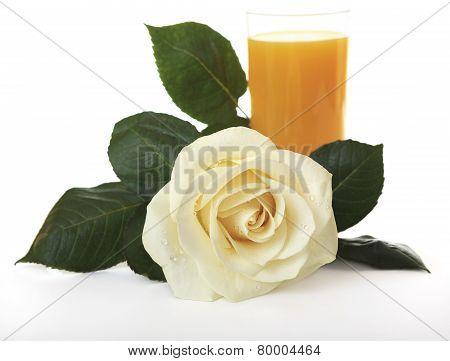 White Rose against orange juice.