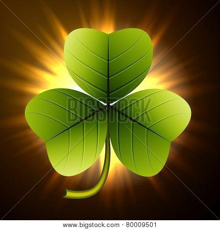 Trefoil clover