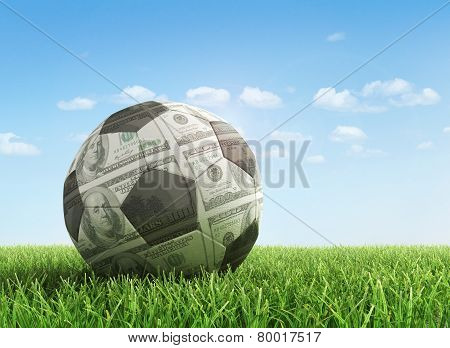 Sport And Money Concept. Dollar Ball In The Green Grass.