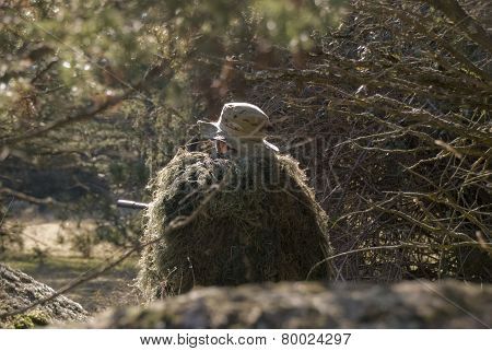 Sniper with ghillie waiting for target in an Airsoft party poster