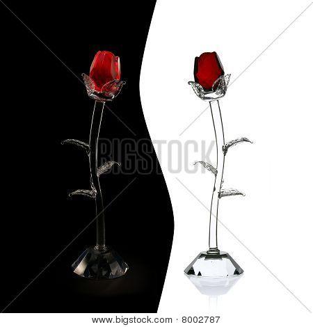 Yin Yang Of Glass Roses