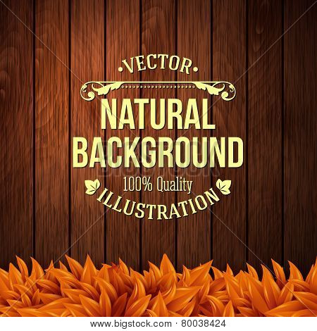 Natural background with wooden board and autumn leaves. Vector i