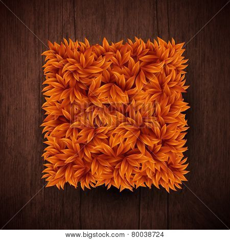 Natural background with wooden board and square shape