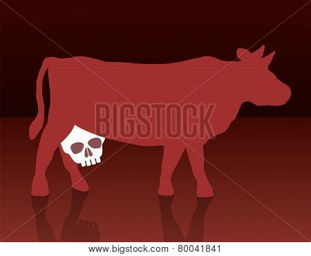 Milk Cow Unhealthy Skull