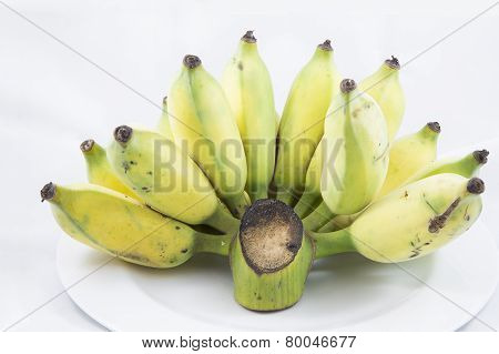 Isolated Of Cultivated Banana On White Plate
