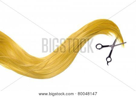 Long golden blonde hair with professional scissors, isolated on white background