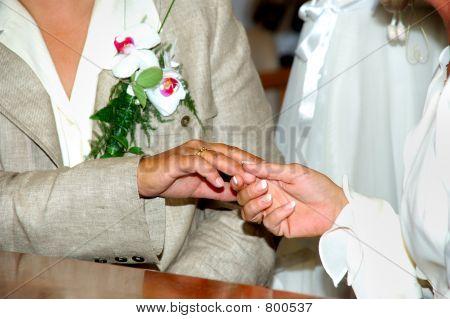 Lesbian couple, newly wed.