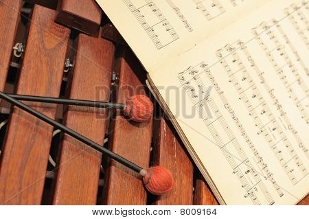 Wood Xylophone With Notes And Mallets