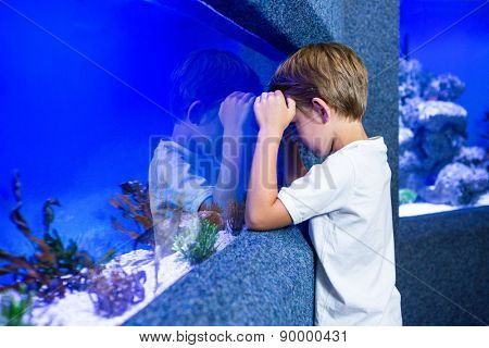 Young man focusing an algae in a tank