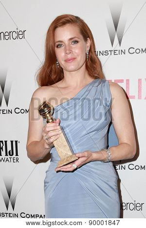 LOS ANGELES - JAN 11:  Amy Adams at the The Weinstein Company / Netflix Golden Globes After Party at a Beverly Hilton Adjacent on January 11, 2015 in Beverly Hills, CA