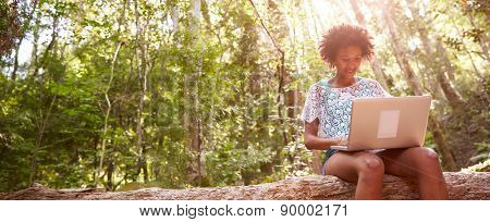 Woman Sits On Tree Trunk In Forest Using Laptop Computer