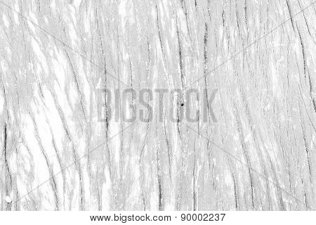 Wood Texture White Color