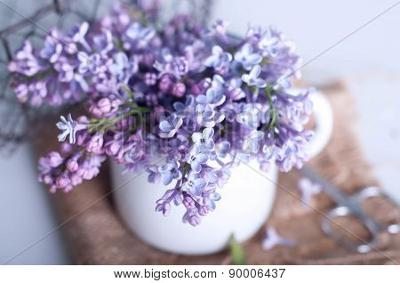 Bouquet Of Purple Lilac Spring Flowers