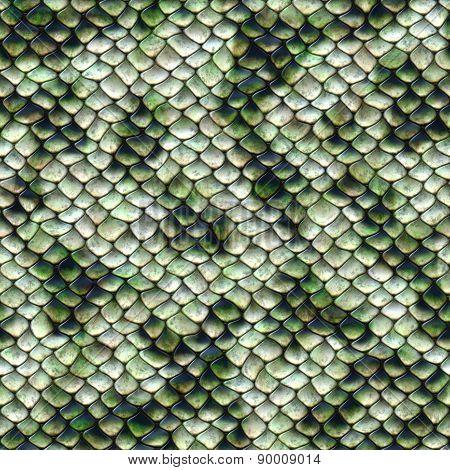 Snake Pattern, Seamless Tiling
