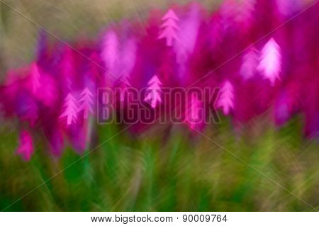 Blur Pink And Green