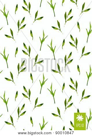 Vector Illustration With Original Floral Background.