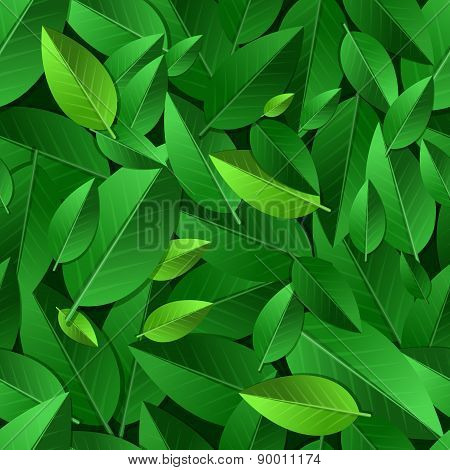 Vector Seamless Summer Pattern With Green Leaves. Nature Ecology Organic Background