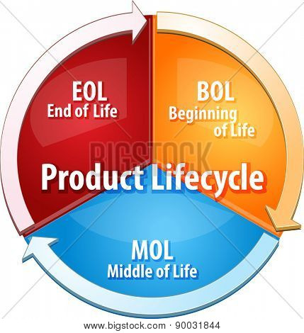 business strategy concept infographic diagram illustration of product lifecycle stages vector