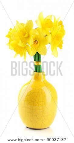 Beautiful bouquet of yellow daffodils in vase isolated on white
