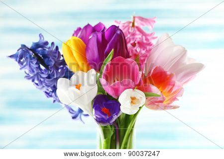 Beautiful spring flowers on color background