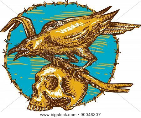 Crow Perching Crowbar Skull Barbed Wire Drawing