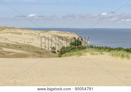 Dead Dunes In Curonian Spit, Lithuania, Europe