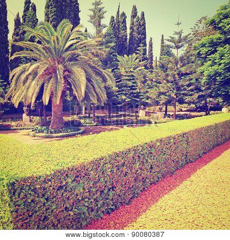 Bahai Park