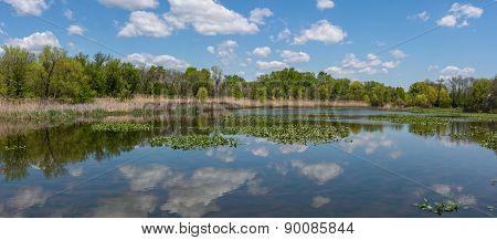 Wildlife Refuge Panorama