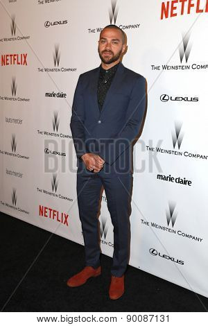 LOS ANGELES - JAN 11:  Jesse Williams at the The Weinstein Company / Netflix Golden Globes After Party at a Beverly Hilton Adjacent on January 11, 2015 in Beverly Hills, CA