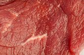 extreme closeup of a raw meat texture poster
