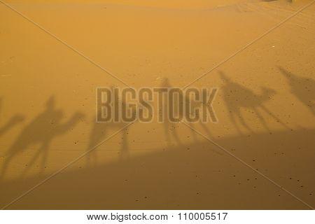 Shadows in the desert