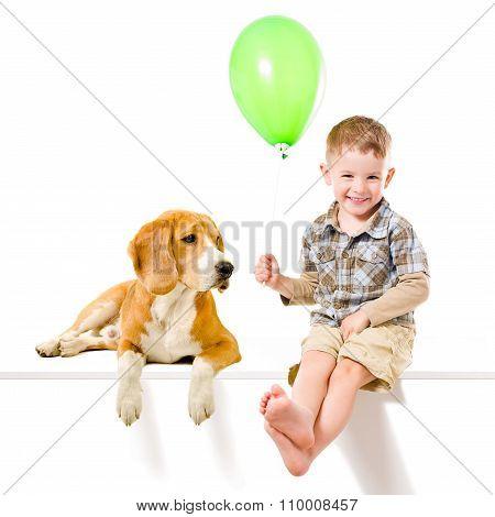 Kid and  Beagle dog playing balloon